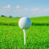 Gelieve te controleren mijn portefeuille meer sportieve illustraties Groene gebied en bal in gras stock foto