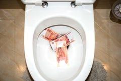 Gelijk geld in het toilet Royalty-vrije Stock Foto's