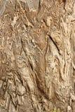 Gelijnde steen Royalty-vrije Stock Afbeeldingen