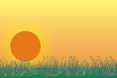 Geïllustreerda grasland met zonsopgang Stock Afbeelding