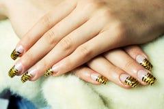 gelly ногти Стоковая Фотография