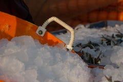 Gelo artificial para congelar peixes frescos no porto de pesca Protuberâncias da neve seca Este frio Doca da pesca na Índia do su imagens de stock royalty free