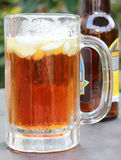 Gelo - bebida fria Imagem de Stock Royalty Free