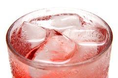 Gelo - bebida fria Fotografia de Stock