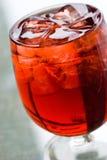Gelo - bebida fria Imagem de Stock