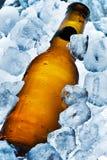 Gelo - cerveja fria fotografia de stock royalty free