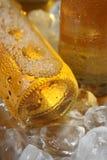 Gelo - cerveja fria Fotografia de Stock