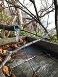 Gelo da água na torneira de bambu Fotografia de Stock