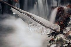 Gelo de água congelado em um ramo acima de The Creek Fotografia de Stock