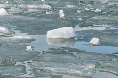 Gelo de derretimento no lago da mola Fotografia de Stock Royalty Free