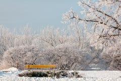 Gelo del ghiaccio avvolto città Fotografia Stock