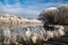 Gelo del Hoar fotografia stock