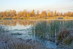 Gelo di autunno sul river-1 Fotografia Stock Libera da Diritti