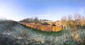 Gelo di inverno della conduttura Fotografie Stock
