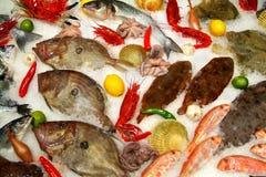 Gelo dos peixes imagem de stock