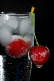 Gelo e água Fotografia de Stock Royalty Free
