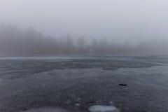 Gelo e névoa e um lago congelado Fotos de Stock Royalty Free