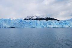 Gelo e natureza do inverno Foto de Stock