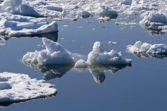 Gelo e reflexões Imagens de Stock