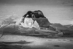 Gelo e rocha foto de stock