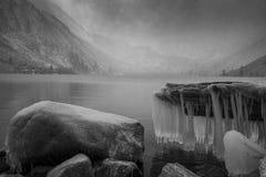 Gelo em rochas e em árvore, com o lago nevado nevoento no fundo imagens de stock royalty free