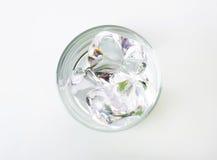 Gelo em um vidro Foto de Stock