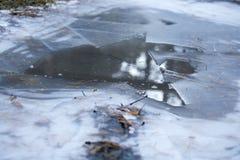 Gelo esmagado em uma floresta, lagoa congelada, a crosta do gelo imagens de stock