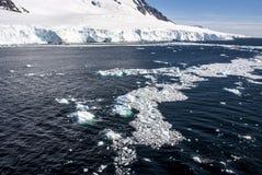 Gelo marinho fora da costa da Antártica Imagem de Stock