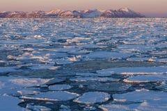 Gelo marinho - Gronelândia Fotos de Stock