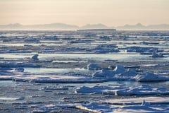 Gelo marinho - Gronelândia Fotografia de Stock