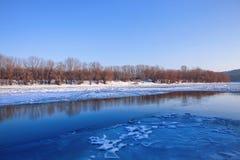 Gelo na água do lago fotos de stock