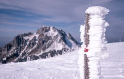 Gelo na marca vermelha do turista foto de stock