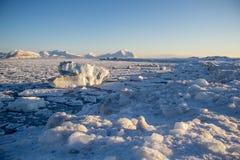 Gelo na praia Foto de Stock Royalty Free
