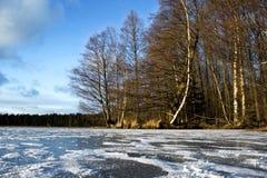 Gelo no lago Imagens de Stock
