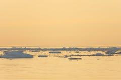 Gelo que flutua no mar calmo Imagens de Stock Royalty Free