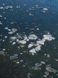 Gelo quebrado Imagens de Stock