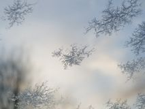 Gelo su una finestra Fotografia Stock