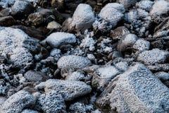 Gelo sulla crescita sulle rocce Fotografia Stock