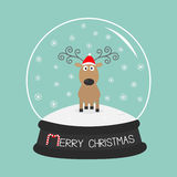 Gelockte Hörner der netten Karikaturrotwild, roter Hut Glaskugel mit Schneeflocken Der blauen flaches Design Hintergrundkarte der Stockbild