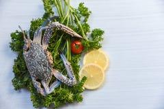 Gelockte Petersilie und Zitrone der frischen rohen blauen Schwimmkrabbemeeresfrüchte auf weißem Tabellenhintergrund lizenzfreies stockbild