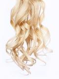 Gelocktes blondes Haar über weißem Hintergrund Lizenzfreie Stockfotos