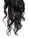 Gelocktes schwarzes Haar lokalisiert im Weiß Lizenzfreies Stockfoto