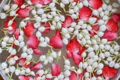Gelsomino e corolla delle rose Immagine Stock Libera da Diritti