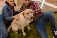 gelukkig Afrikaans Amerikaans paar met de hond die van Labrador bewegen zich aan royalty-vrije stock afbeeldingen