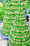 Gelukkig bamboe Royalty-vrije Stock Fotografie