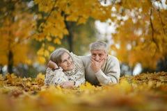 Gelukkig bejaard paar Stock Fotografie
