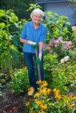 Gelukkig Bejaarde die haar Bloemtuin cultiveren royalty-vrije stock foto's