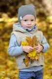 Gelukkig bevindt weinig jongen zich in vest en GLB dat door gevallen bladeren wordt omringd stock fotografie