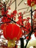 Gelukkig Chinees nieuw jaar Royalty-vrije Stock Foto