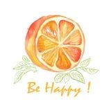 Gelukkig is de waterverf vectorillustratie van oranje plak met bladeren en woorden Stock Fotografie